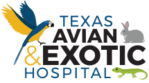 Texas Avian & Exotic Hospital